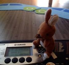 PreK/K Lesson: Bringing on Spring with John the Rabbit